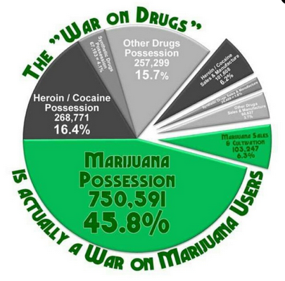 The War on Marijuana